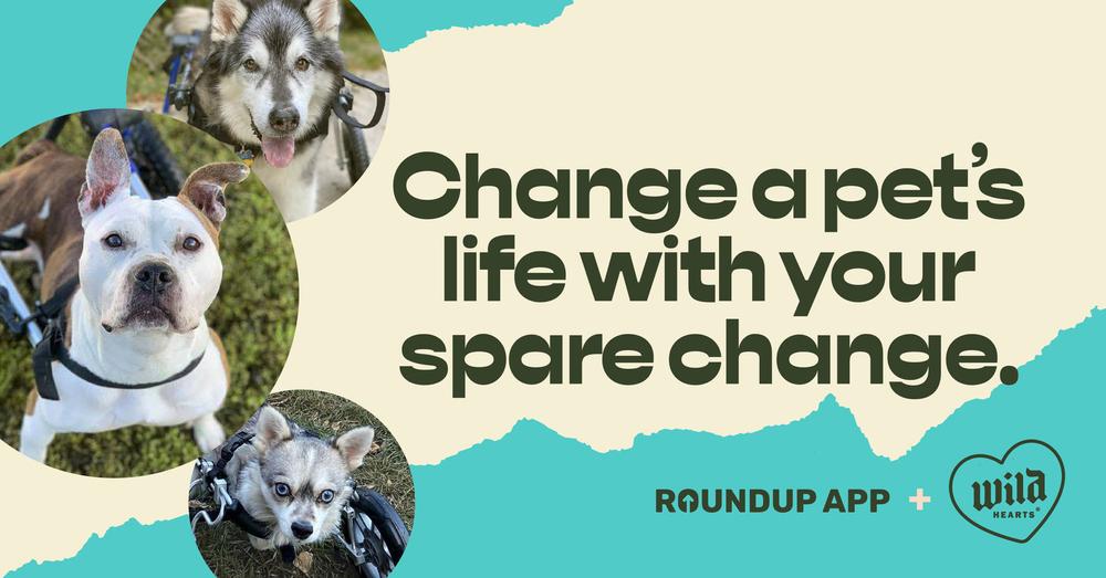 Wild Hearts RoundUp App Facebook image